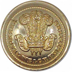 Royal Welch Fusiliers  (PoW's Feathers Pattern) 19mm - Gold Colour  Anodised Staybrite military uniform button