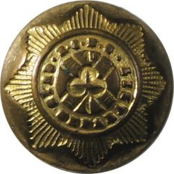 4th Royal Irish Dragoon Guards 18mm -1855-1904  Brass Military uniform button