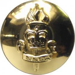 Duke Of Edinburgh's Royal Regiment 14mm - Gold Colour  Anodised Staybrite military uniform button