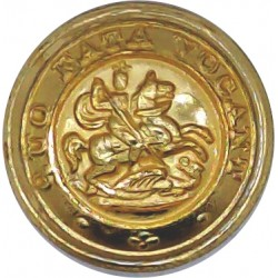 Royal Northumberland Fusiliers 19mm - Gold Colour  Anodised Staybrite military uniform button