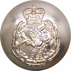 1st The Queen's Dragoon Guards 14mm - Gold Colour Queen's Crown. Anodised Staybrite military uniform button
