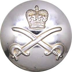 Royal Army Physical Training Corps 26mm - Gold Colour with Queen Elizabeth's Crown. Anodised Staybrite military uniform button