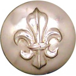 Queen's Lancashire Regiment 25mm - Gold Colour  Anodised Staybrite military uniform button