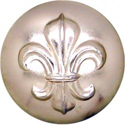 Royal Army Ordnance Corps 19.5mm - Screw-Fit with Queen Elizabeth's Crown. Anodised Staybrite military uniform button