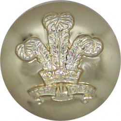 Royal Regiment Of Wales 25.5mm - Gold Colour  Anodised Staybrite military uniform button