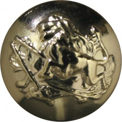 British South Africa Police - 1965-1980 19mm - Gold Colour  Anodised Police or Prisons uniform button