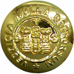 5th Royal Inniskilling Dragoon Guards 14mm - Gold Colour  Anodised Staybrite military uniform button