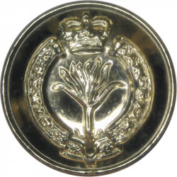 16th/5th The Queen's Royal Lancers 18.5mm - Gold Colour King's Crown. Anodised Staybrite military uniform button