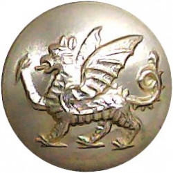 Irish Guards 19mm - Gold Colour with Queen Elizabeth's Crown. Anodised Staybrite military uniform button