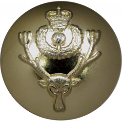 Queen's Own Highlanders (Seaforth & Cameron) 19mm - Gold Colour with Queen Elizabeth's Crown. Anodised Staybrite military unifor