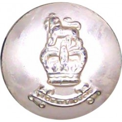 Royal Army Pay Corps 13.5mm - Gold Colour with Queen Elizabeth's Crown. Anodised Staybrite military uniform button