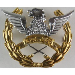 Pakistan Army Aviation Corps   Anodised Staybrite army cap badge