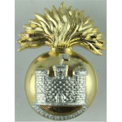Royal Inniskilling Fusiliers Sealed 27 Apr 1967  Anodised Staybrite army cap badge