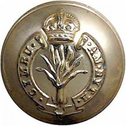 Adjutant General's Corps - Current Pattern 14mm - Gold Colour Queen's Crown. Anodised Staybrite military uniform button