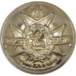 Sherwood Foresters (Notts & Derby Regiment) 25.5mm - Pre-1952 with King's Crown. Anodised Staybrite military uniform button