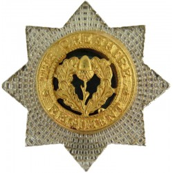 Cheshire Regiment Smaller Than ORs  Silver-plated, gilt and enamel Officers' metal cap badge