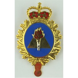 Canadian Armed Forces Training Development Branch  with Queen Elizabeth's Crown. Gilt and enamel Officers' metal cap badge