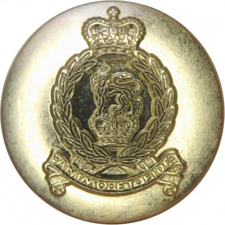 Royal Tank Regiment 19mm - Gold Colour with Queen Elizabeth's Crown. Anodised Staybrite military uniform button