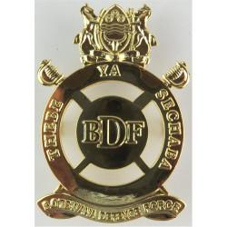 Botswana Defence Force   Gilt Other Ranks' metal cap badge