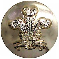 Royal Regiment Of Wales 14mm - Gold Colour  Anodised Staybrite military uniform button