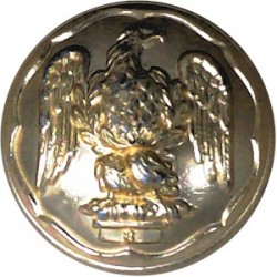 Royal Irish Fusiliers 25mm - Gold Colour  Anodised Staybrite military uniform button