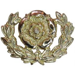 Royal Hampshire Regiment Pre-1993  Anodised Staybrite collar badge
