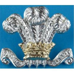 10th Royal Hussars / Royal Hussars (PWO) 32.5mm High - Rare  Anodised Staybrite collar badge