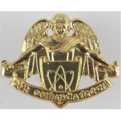 Irish Army Signal Corps - Le Luas A Cosnuighim   Anodised Staybrite collar badge