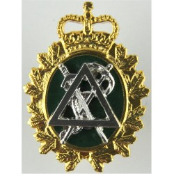 Canadian Armed Forces Dental Branch  with Queen Elizabeth's Crown. Gilt and enamel Officers' collar badge