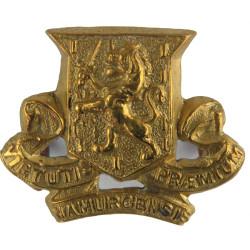 Royal Irish Regiment FL -  Pre-1922  Brass Other Ranks' collar badge
