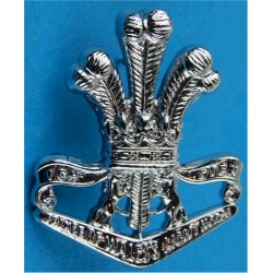 4/19th Prince Of Wales Light Horse - Australian Army   Chrome-plated Other Ranks' collar badge