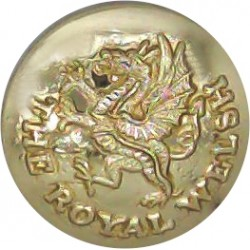 Irish Guards 19.5mm - Screw-Fit with Queen Elizabeth's Crown. Anodised Staybrite military uniform button