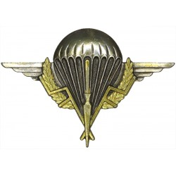 Chad Parachute Wings Drago Paris  Silver-plate and gilt Parachute jump wings or badge