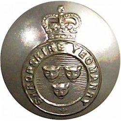 Army Department Fleet (Royal Corps Of Transport) 23.5mm - Gold Colour Queen's Crown. Anodised Staybrite military uniform button