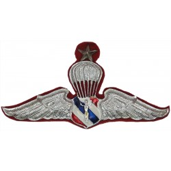 Thailand Border Patrol Police Senior Parachute Wings Down-Swept Wings  Chrome and enamelled Parachute jump wings or badge