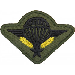 France - Parachute Wings - Black On Olive With Yellow Wreath  Embroidered Parachute jump wings or badge
