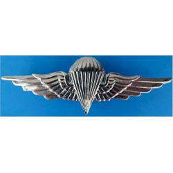 Egyptian Parachute Wings - 4th Class   Chrome-plated Parachute jump wings or badge