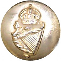 Irish Guards 15.5mm - Gold Colour with King's Crown. Anodised Staybrite military uniform button