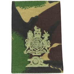WO1 Master Gunner Class 2: Royal Arms + Cannon FL DPM Camo Rank Slide with Queen Elizabeth's Crown. Embroidered Warrant Officer