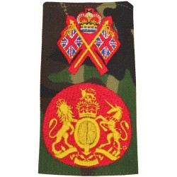 WO1 Recruiter DPM Camo Rank Slide with Queen Elizabeth's Crown. Embroidered Warrant Officer rank badge