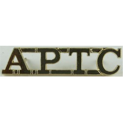 APTC (Army Physical Training Corps) Rare  Anodised Army Staybrite shoulder title