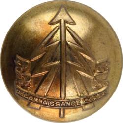 Royal Hampshire Regiment - Officers' Quality 25.5mm - Rimmed  Bronze Military uniform button