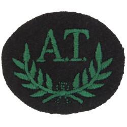 AT In Wreath (Anti-Tank Gunner; Royal Irish Rangers) Green On Black  Embroidered Army cloth trade badge