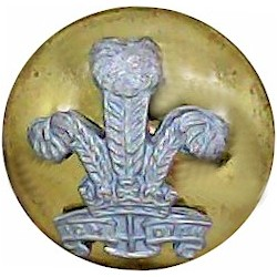 Royal Regiment Of Wales - Officers' 13.5mm Mounted Dome  Silver-plate and gilt Military uniform button