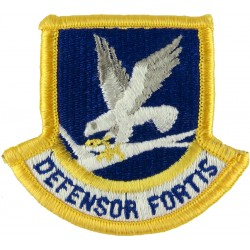 United States Air Force Security Forces Beret Flash Defensor Fortis  Embroidered United States Air Force insignia