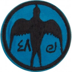 Iraqi Air Force - 48 Squadron Circa 1990  Embroidered Foreign Air Force insignia