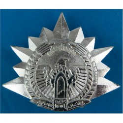 Afghanistan Air Force Cap Badge   Anodised Foreign Air Force insignia