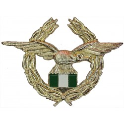 Nigerian Air Force   Anodised and enamel Foreign Air Force insignia