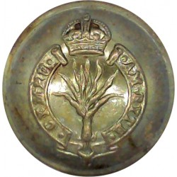 Manchester Regiment 19mm with King's Crown. Brass Military uniform button