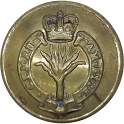 Canada Militia 19mm - 1902-1924 with King's Crown. Gilt Military uniform button